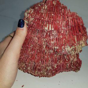 קורל טבעי איכותי (לא צבוע) גוון אדום משקל: 425 גרם